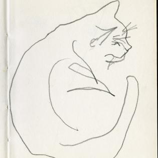 Studie van kat in schetsboekje