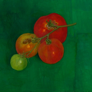 Tomaten aan takje