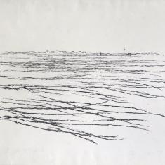 De Waal, 1991